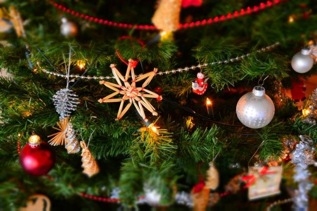 navidad salud bucodental